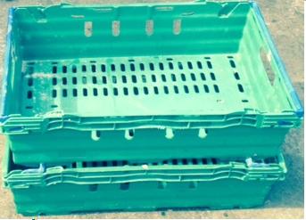 600x400x150-bac-Green-Blue-Arms